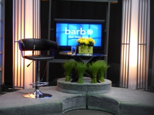 The TV Interview Set